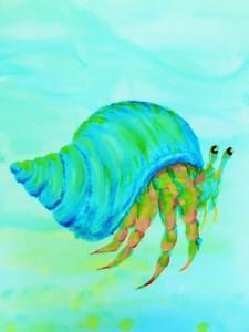 hermit crab (2)